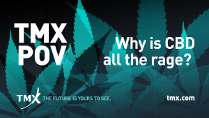 TMX POV - Why is CBD all the rage?